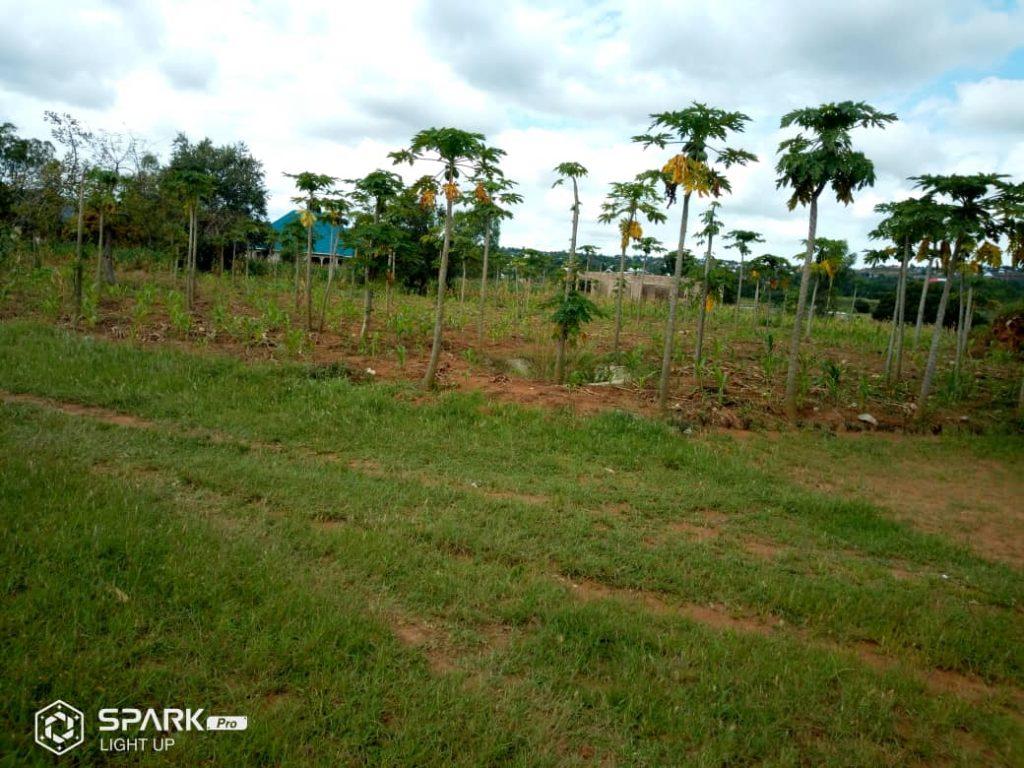WONDERFUL PROGRESS IN TANZANIA